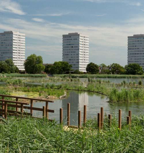 Habitat creation in inner city