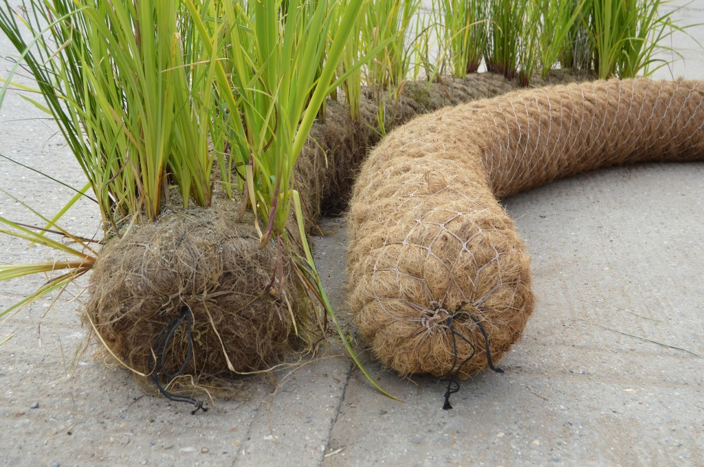 End View Of 200mm Diameter Unplanted and Pre-Established Coir Rolls