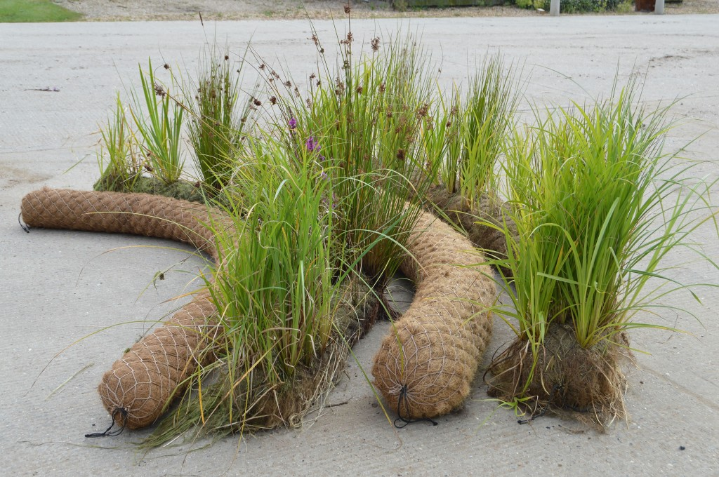 Selection Of Unplanted and Pre-Established 200mm and 300mm Coir Rolls