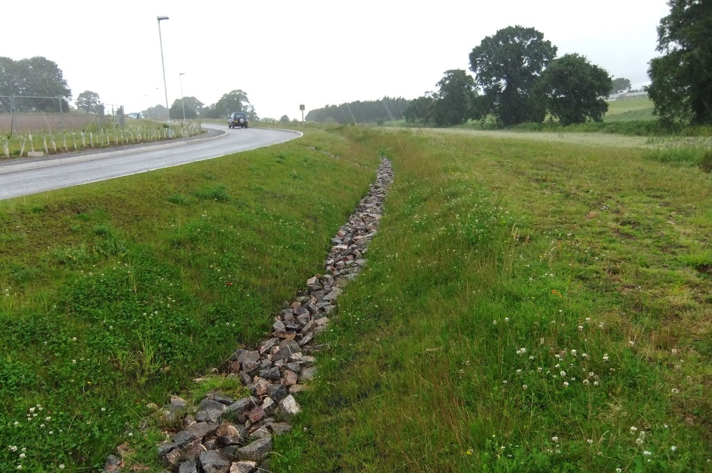 VMax P550 vegetated swale