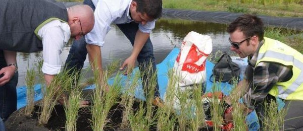 Training-Day-at-Salix-nursery-with-frog-environmental