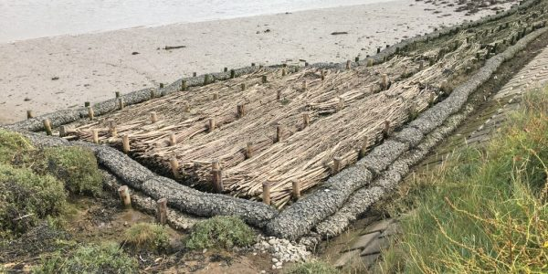Rock Rolls, Rock Mattresses and Brushwood Fascines preventing erosion on the River Crouch